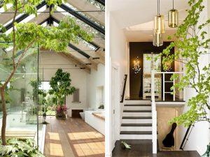 thiết kế nhà ở homestay