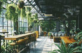 Không gian quán cafe nhà kính vừa gần gũi vừa đẹp thơ mộng tựa như 1 khu vườn cổ tích.